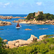 Cote de granite Rose, Brittany Coast near Ploumanach, France — Stock Photo