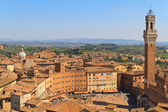 Piazza del Campo with Palazzo Pubblico, Siena, Italy — Stock Photo