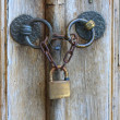 Old iron security lock of ornamental wooden door — Stock Photo #13377743