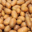 Basket of Potatoes — Stockfoto