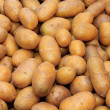 Basket of Potatoes — Foto de Stock