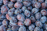 Tasty organic plums at local market — Stock Photo