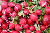 Tasty organic radish at local market — Stock Photo