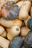 Tasty organic pumkins at local market — Stock Photo