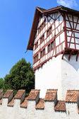Hrad zug, švýcarsko — Stock fotografie