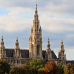 Vienna City Hall — Stock Photo #13443559