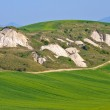 Crete Senesi - Tuscan Landscape in Spring, Italy — Stock Photo #13443280