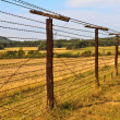Iron Curtain Remains — Stock Photo #13443499