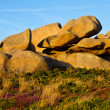 Beautiful landscape with granite boulders, Brittany, France — Stock Photo #13461821