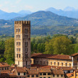 Stock Photo: Lucca, Tuscany - View over Old Town