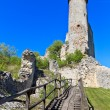 Falkenstein Castle Ruins, Lower Austria — Stock Photo #13473623