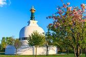 Vienna Peace Pagoda — Stock Photo