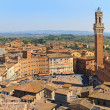 Piazza del Campo with Palazzo Pubblico, Siena, Italy -  