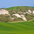 Crete Senesi - Tuscan Landscape in Spring, Italy — Stock Photo #14333551