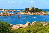Cote de granite Rose, Brittany Coast near Ploumanach, France — Stock Photo