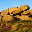 Beautiful landscape with granite boulders, Brittany, France — Stock Photo