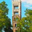 Stock Photo: Lucca, Tuscany - View on tower of Dome
