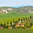 Typical Tuscany landscape view - Stock Photo