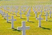American War Cemetery — Stock Photo
