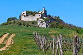 Falkenstein Castle Ruins, Lower Austria — Stock Photo