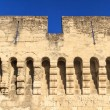 Avignon Medieval City Wall — Foto Stock
