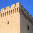 Avignon in Provence - Tower of the Popes Palace — Stock Photo