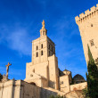 Avignon - Notre Dames des Domes Church near Papal Palace, Proven — Stock Photo #15512143