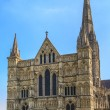 Salisbury Cathedral Front view and park on sunny day, South Engl — Stock Photo #15522087