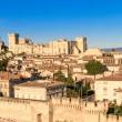 Avignon in Provence — Stock Photo