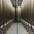 Modern Winery Steel Tanks — Stock Photo #20108729