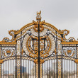 Ornate Gate at Buckingham Palace,  London, UK — Stock Photo