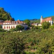 Stock Photo: Spitz Village in famouse Wachau Valley, Austria