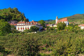 Spitz Village in famouse Wachau Valley, Austria — Stock Photo