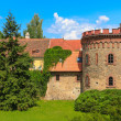 Old town fortification in Trebon (in GermWittingau), Czech Re — Stock Photo #29063773