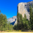 El Capitan, Yosemite National Park, California — Stock Photo