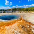 Crested Pool Geyser, Yellowstone National Park (Upper Geyser Bas — Stock Photo