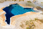 Yellowstone National Park, Blue Star Spring in the Upper Geyser — Stock Photo