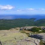 Acadia National Park Panorama of Frenchman Bay, Maine, USA — Stock Photo