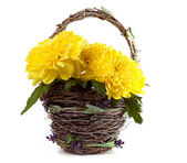 Basket of yellow flowers — Stock Photo