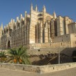 Palma's Cathedral — Stock Photo #21356051