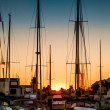 Harbour Morning — Stock Photo