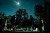 Fangelsbachfriedhof cemetry — Stock Photo