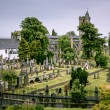 Scottish graveyard — Stock Photo #13878565