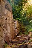 Escalier dans le parc — Photo