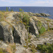 Stock Photo: Rocky shore against sewith sail