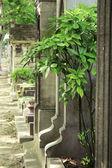 Cemetery of Montmartre — Stock Photo