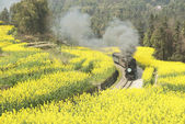Jia Yang steam train China sichuan province chengdu city zigong — Stock Photo