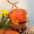 Colorful autumn indoor decoration with pumpkins, marigolds and dry flowers for Thanks Giving or Halloween. — Stockfoto