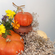 Colorful autumn indoor decoration with pumpkins, marigolds and dry flowers for Thanks Giving or Halloween. — Foto de Stock
