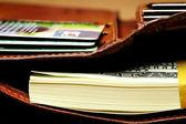 Paquete de dólares en su cartera — Foto de Stock